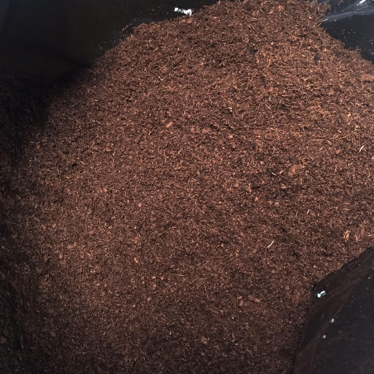 Turfa de Sphagnum Canadense - Fardo 50 Litros.